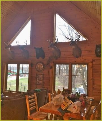 25 brown county cabins pet friendly images gallery inspirational Brown County Cabins Pet Friendly