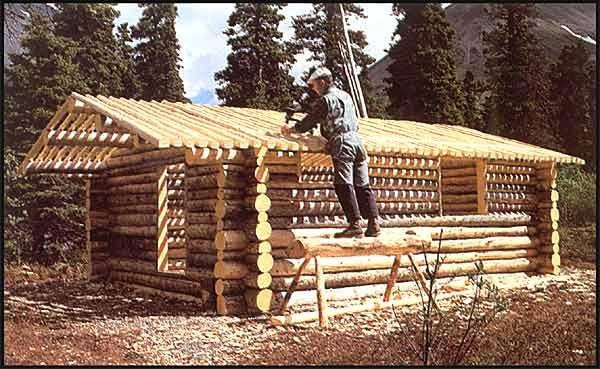 alone in the wilderness the inspiring true story of a modern day Building A Cabin In The Alaskan Wilderness
