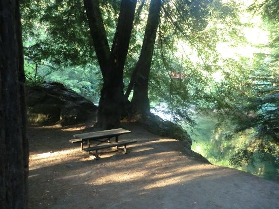 big sur campground cabins updated 2018 prices reviews ca Big Sur Cabins And Campground