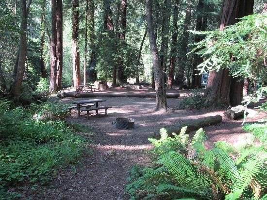 big sur campground cabins updated 2018 prices reviews ca Big Sur Campground & Cabins