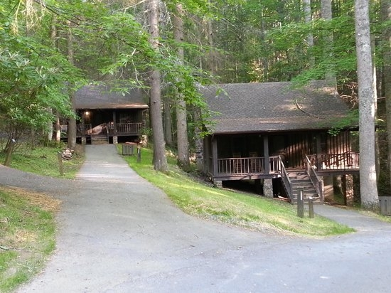 cabin 13 cabin 7 was taken in november so we will stay in 13 Roan Mountain State Park Cabins