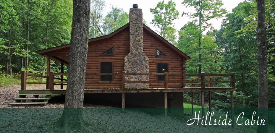 cabins the caves hocking hills old mans cave cabin rental ohio Hocking Hills Cabins Pet Friendly