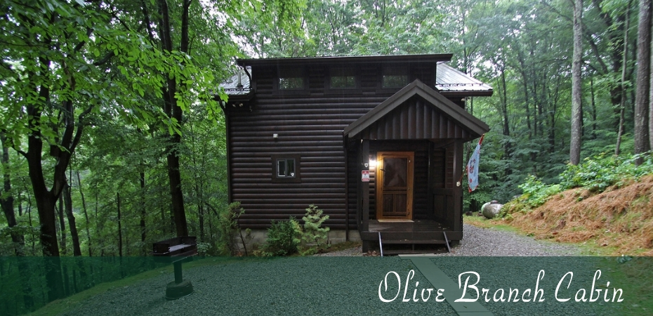 olive branch cabin hocking hills old mans cave ohio Romantic Cabins In Hocking Hills