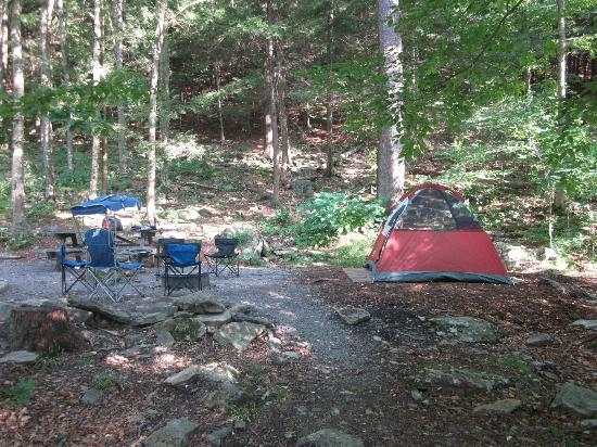 our campsite picture of worlds end state park forksville Worlds End State Park Cabins