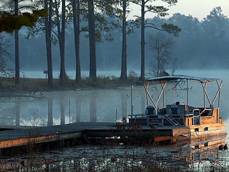 paul b johnson state park a mississippi state park located near Paul B Johnson State Park Cabins