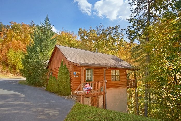 pet friendly cabin dollywood cabin rental Pet Friendly Cabins In Tennessee