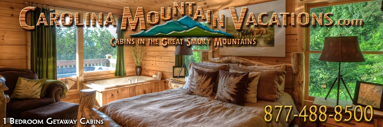 romantic getaway nc mountain log cabins rentals 1 bedroom managed Cabins In Smoky Mountains Nc