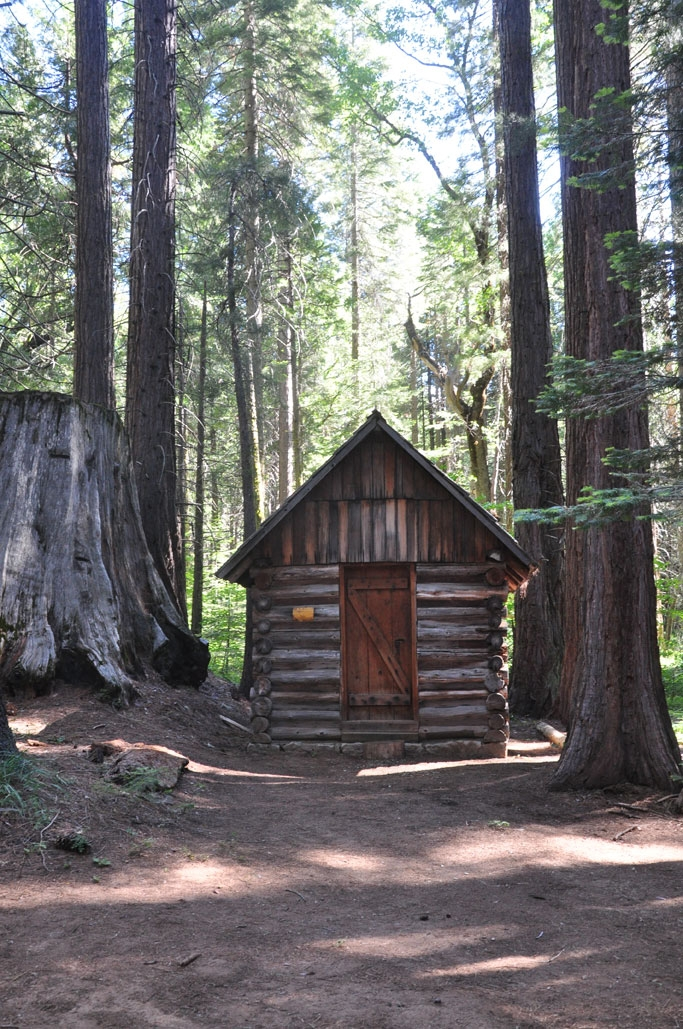 sequoia national forest solairt photography Sequoia National Forest Cabins