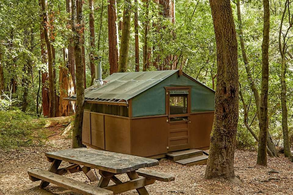 big basin redwoods state park camping in the big trees Redwood National Park Cabins