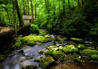 4 unexpected bonuses of staying at a secluded smoky mountain cabin Secluded Cabins In Smoky Mountains
