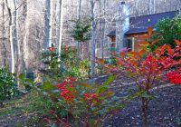 asheville cabins of willow winds offers winter special january Asheville Cabins Of Willow Winds Asheville Nc