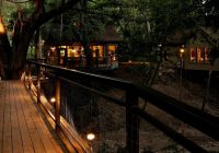 river road treehouses new braunfels tx resort reviews Cabins In New Braunfels Tx