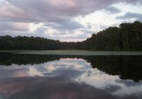 the top 10 things to do near sam houston national forest Sam Houston National Forest Cabins