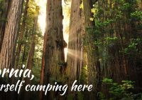 where to camp in california best tent camping rv parks cabin Cabin Camping In California